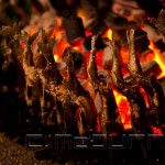 Poisson grillé • Grilled fish